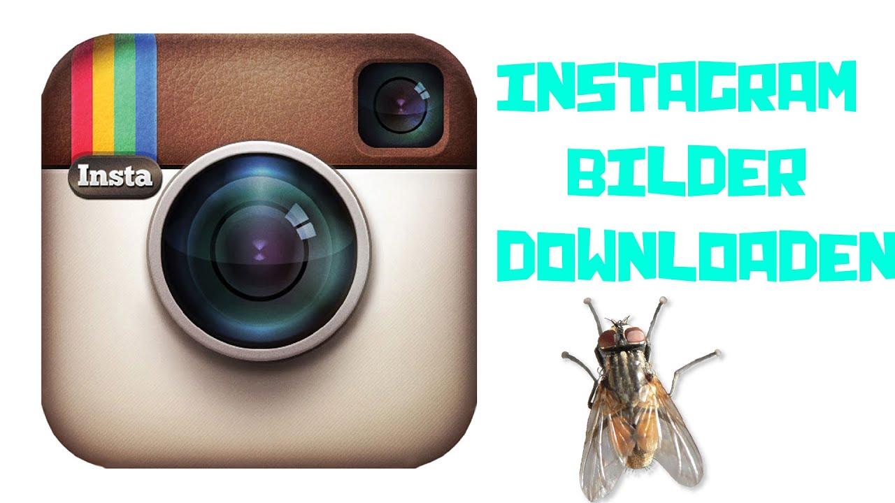 videos herunterladen instagram