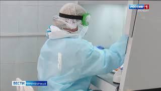 Коронавирус актуальное в Оренбуржье за сутки 54 новых заболевших