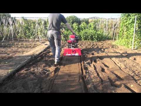Trabajo con motocultor Powerground PRO-RAPTOR 9 cv de www.maquinariadejardineria.net 692829022