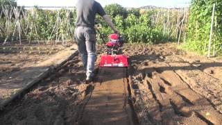 Demostracion trabajo com motocultor PANZER 9 cv,comprelo en www.maquinariadejardineria.net 692829022