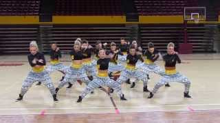 ASU Dance Team- Hip Hop 2014(Arizona State University Dance Team performing their hip-hop routine for 2014. PS- the crowd was encouraged to scream and cheer for the girls to get them ..., 2014-01-20T05:55:53.000Z)
