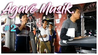 AGAVE MUSIC 2