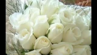 Скачать Все цветы для мамы