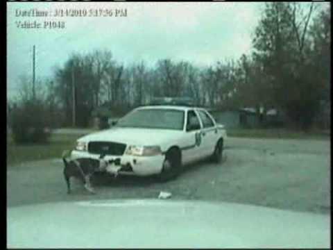 Dog Attacks Police Cruiser