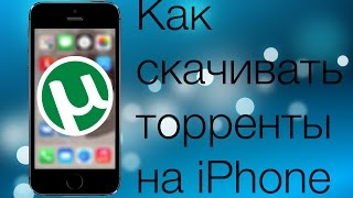 Как качать торренты на iPhone/iPad - есть ответ!