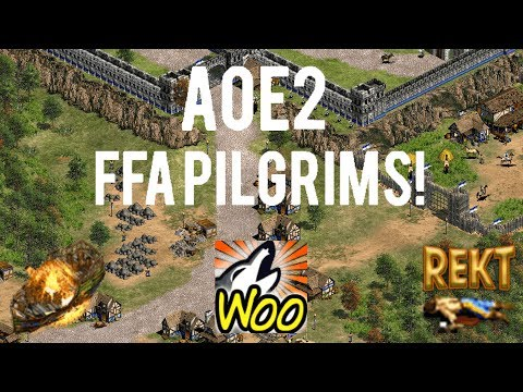 AoE2 - Another Epic Free For All on Pilgrims!