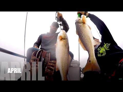 A Fishermen's Log | 2018 FULL YEAR REVIEW | Fishing Pensacola Florida