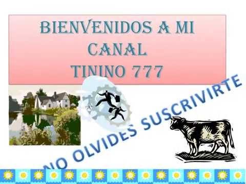 CANAL TININO777