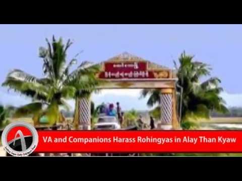 Rohingya Daily News 18 August 2016