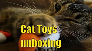 Unboxing organic cat toys from Whimsily Ever After - Daily Vlog unboxing car toys