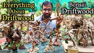 Driftwood For Room / Garden Decoration | Bonsai & Aquarium Driftwood