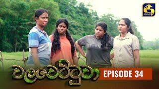 Walawettuwa Episode 34 || ''වලවෙට්ටුවා'' ||  13th August 2021 Thumbnail