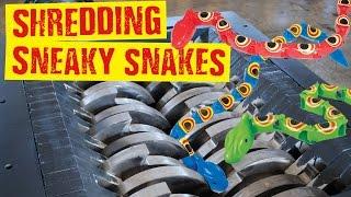 Shredding Sneaky Snakes - Shredding Stuff