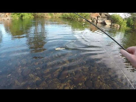 Ultralight Fishing For Trout With Lures. Good Session. #30
