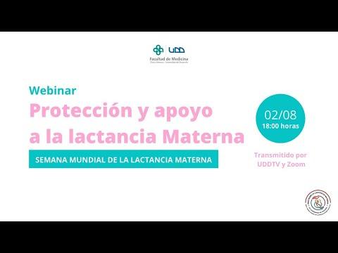 Webinar   Protección y apoyo a la lactancia materna (2 de agosto)