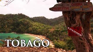 Tobago: Karibik - Reisebericht