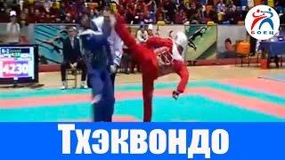 Тхэквондо. Россия против Южной Кореи - Матчевая встреча.