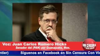Levantamos La Mano Para La Candidatura Del Pan Para La Presidencia: Romero Hicks