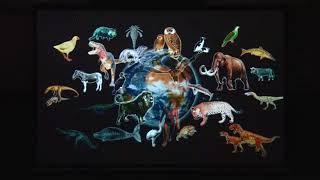 2018年1月12日に開催された 知多半島 生態系ネットワークフォーラム 知...