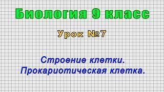 Биология 9 класс (Урок№7 - Строение клетки. Прокариотическая клетка.)