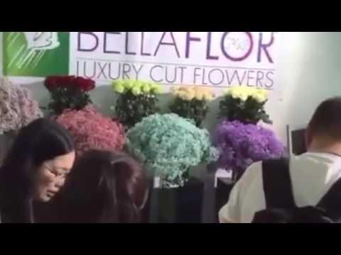 #19 Hortiflorexpo 2017 Bellaflor Group