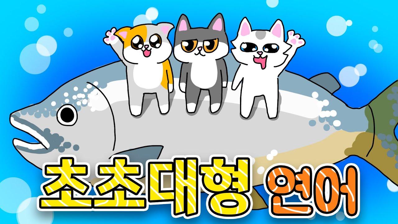 초대형 연어 먹방 | 고양이산책