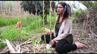 Documental Ecoaldea Velatropa
