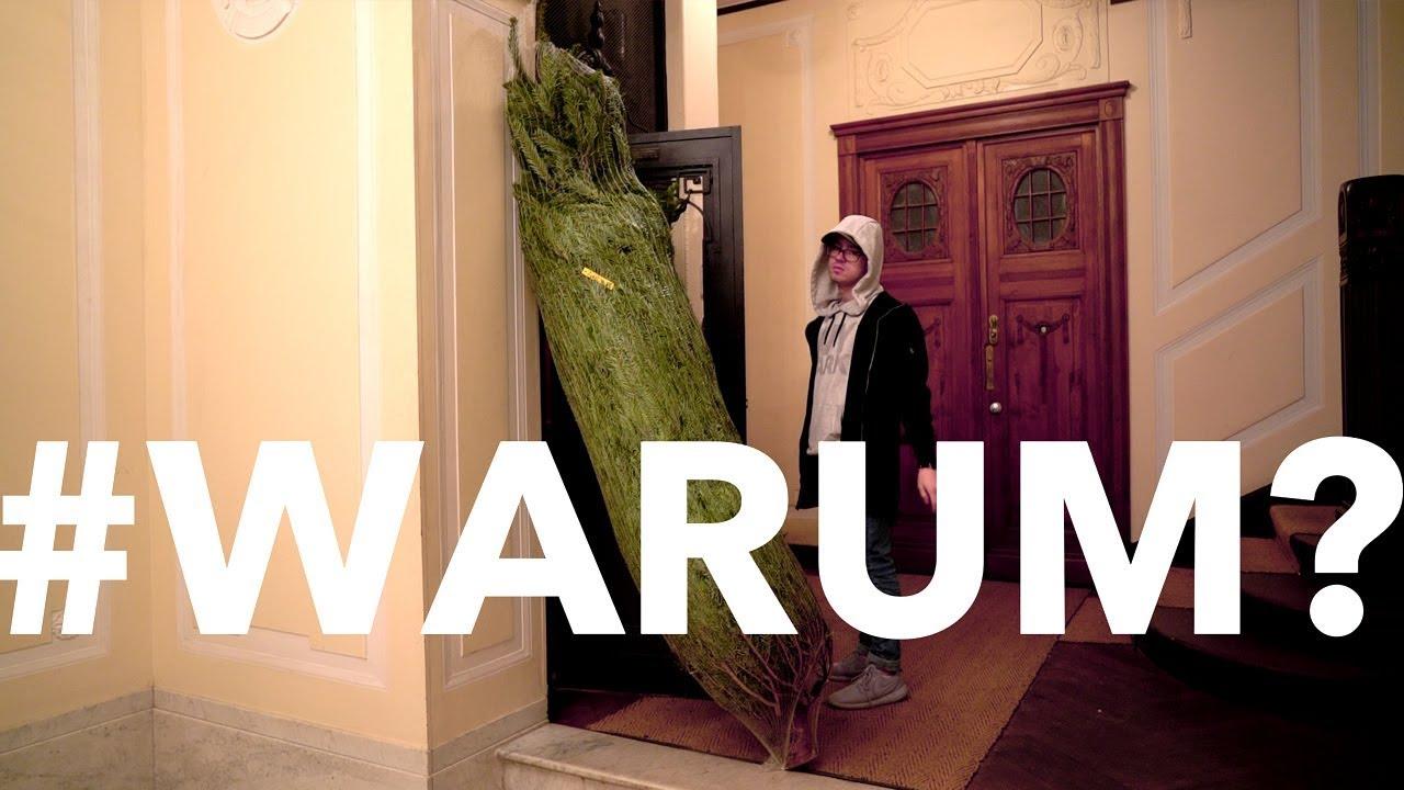 oh tannenbaum weihnachtsbaum besorgen und aufstellen. Black Bedroom Furniture Sets. Home Design Ideas