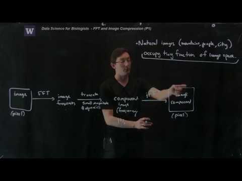 Fourier Transforms: Image Compression, Part 1