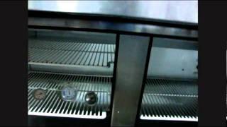 True Commercial 2 Door Sandwich Salad Pizza Prep Table