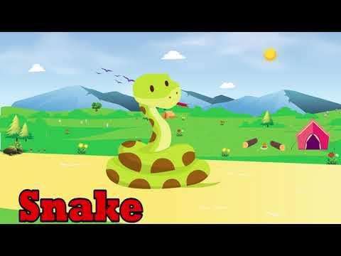 tiere-lernen-für-kinder---tiergeräusche-für-baby---tiervideo-für-kinder-#91