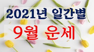 2021년 9월  정유월(丁酉月) 운세  [소혜사주]