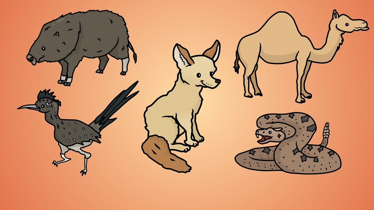 Animals in desert drawing