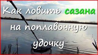 Рыбалка на карася и сазана в апреле(Видео о ловле карася и сазана в апреле. Ловлю в Краснодарском крае, дата рыбалки - 26 апреля. К сожалению,..., 2016-05-05T15:41:17.000Z)