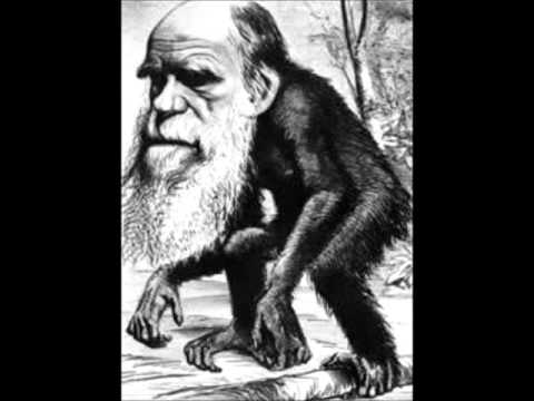 Father Bill McQuarters on Charles Darwin