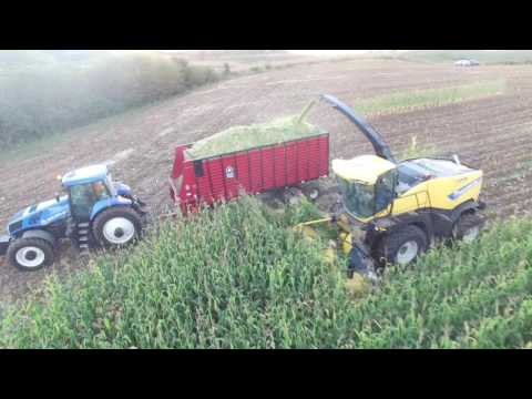 LnB Farms Corn Silage 2016