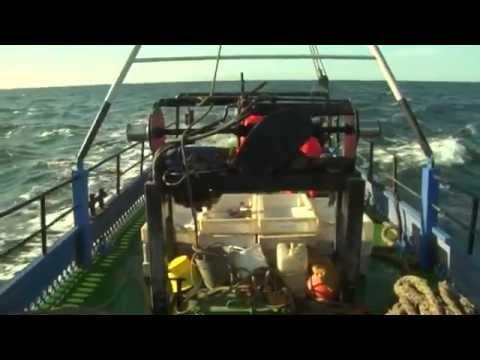 Industrial Fishing Methods, Tööstuslikud kalapüügiviisid ENG