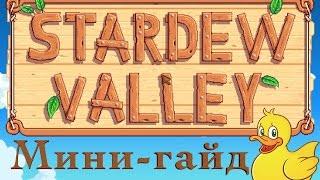Stardew Valley мини гайд