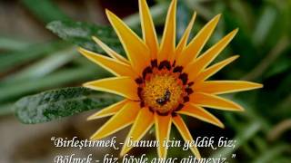 Mevlana - Talat Halman'ın kaleminden; Mehtapta Yakamozlar - Tanini Trio