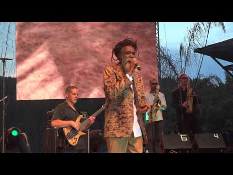 Don Carlos and Dub Vision 'Just Can't Stop' Reggae on the River July 31, 2015