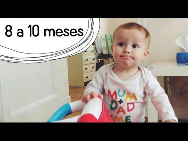 Actividades Bebé 8 A 10 Meses Estimulación Temprana Youtube