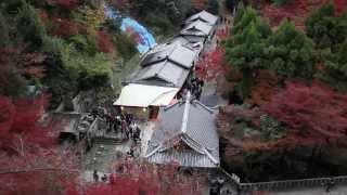 Japan Kansai Travel Nov & Dec 2013