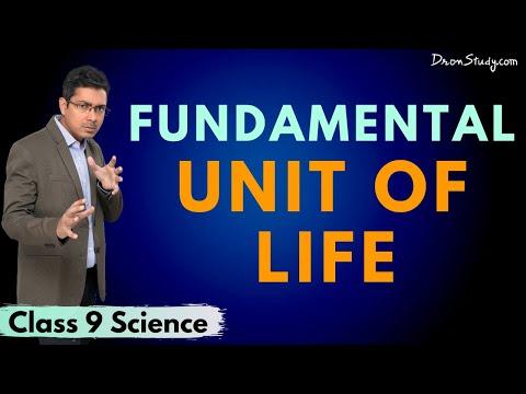 Fundamental Unit Of Life - Plasma Membrane : Chapter 4: CBSE Class 9 Science