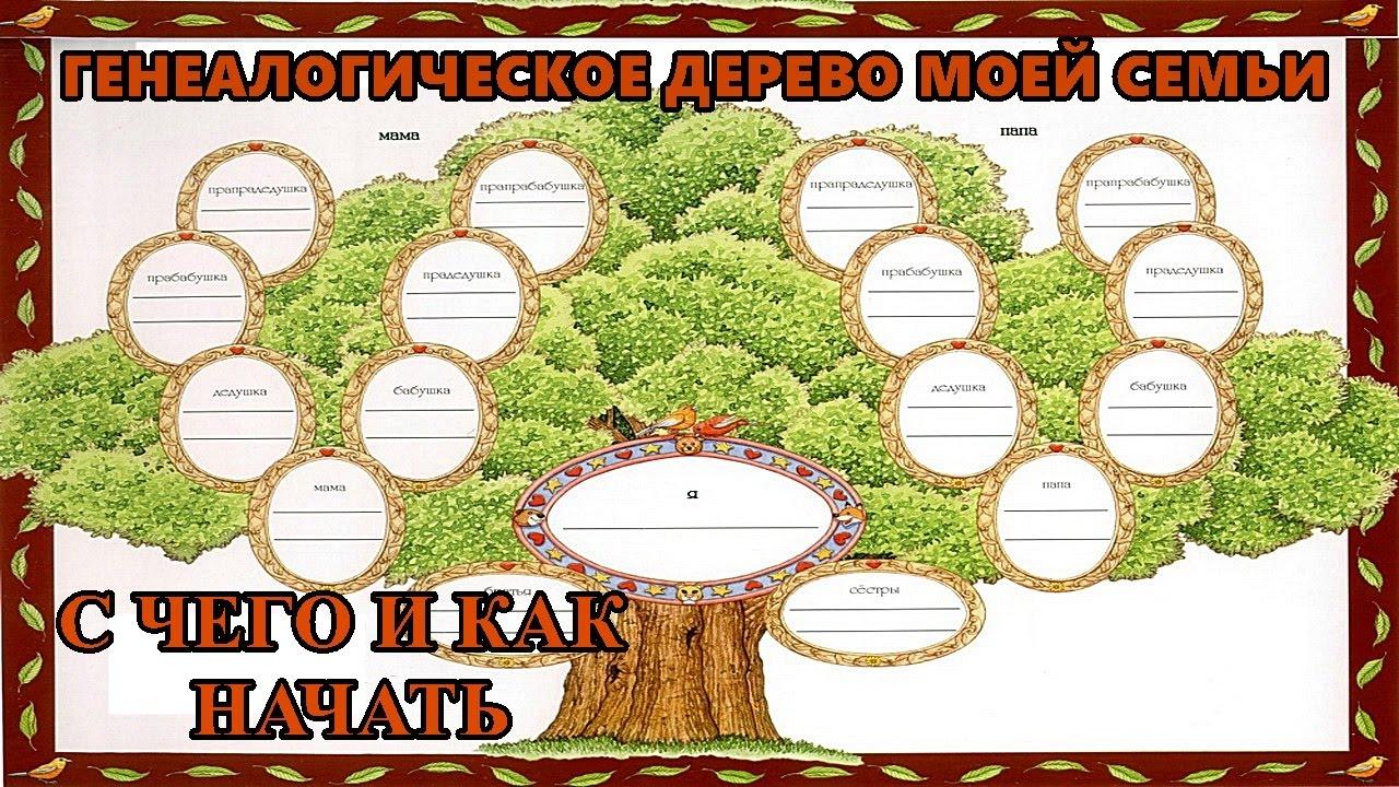 Как составить генеалогическое древо схема фото 220