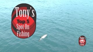 Top 5 Casting Spoons For Salmon