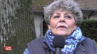 A le rencontre de Cirrus des Aigles - Corine Barande Barbe - Chantilly - 28/04/16