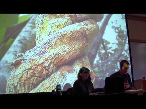 PIELC 2013: 'Deep Green Resistance' Part Three - Sam Leah & Dillon Thomson