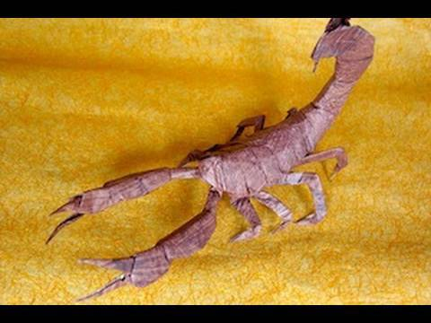 Making Your Own Origami Design Scorpion
