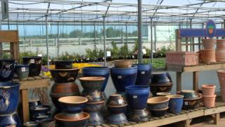 1360 - Garden Centre Restaurant Nature Reserve Business For Sale In Cumbria