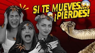 INTENTA NO MOVERTE CHALLENGE 😰 | Animales Salvajes | Alex Flores